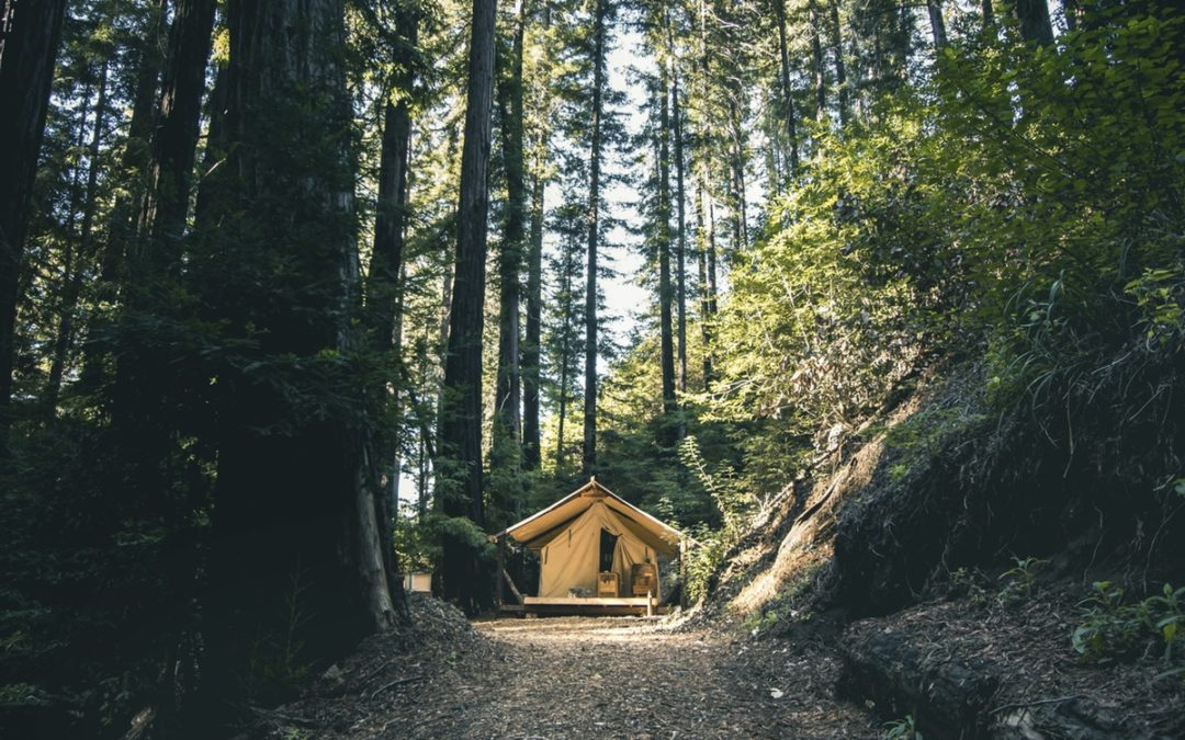 What Can Glamping Teach Us About Customer Experience?